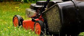 Incontournable tondeuse pour la pelouse de votre jardin